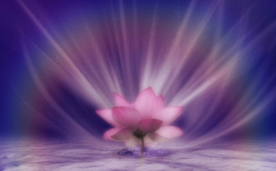 Psychic reading testimonials - Client testimonials for psychic Lilly