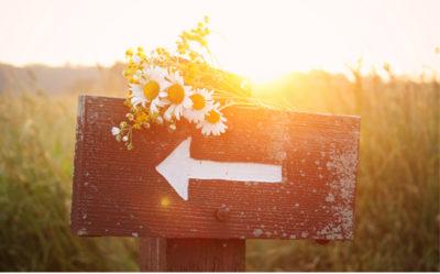 Spiritual counseling advisors - Spiritual advice online - Spiritual coaching